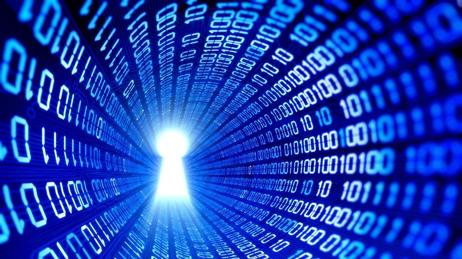 DDoS and Data Theft: is my business next?